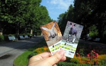 Зоопарк в Берлине, или Хочу быть бегемотом!