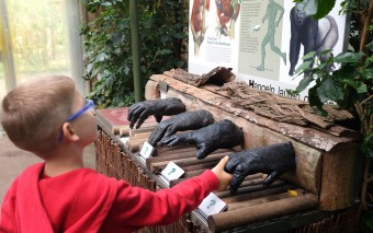 Зоопарк в Кельне: наш репортаж!
